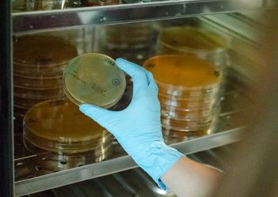 laboratorio-micral-lugo-verificaciones