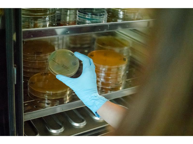 laboratorio-micral-lugo (17)