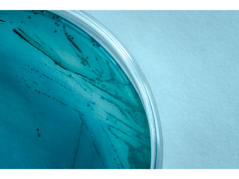 laboratorio-micral-lugo (20)