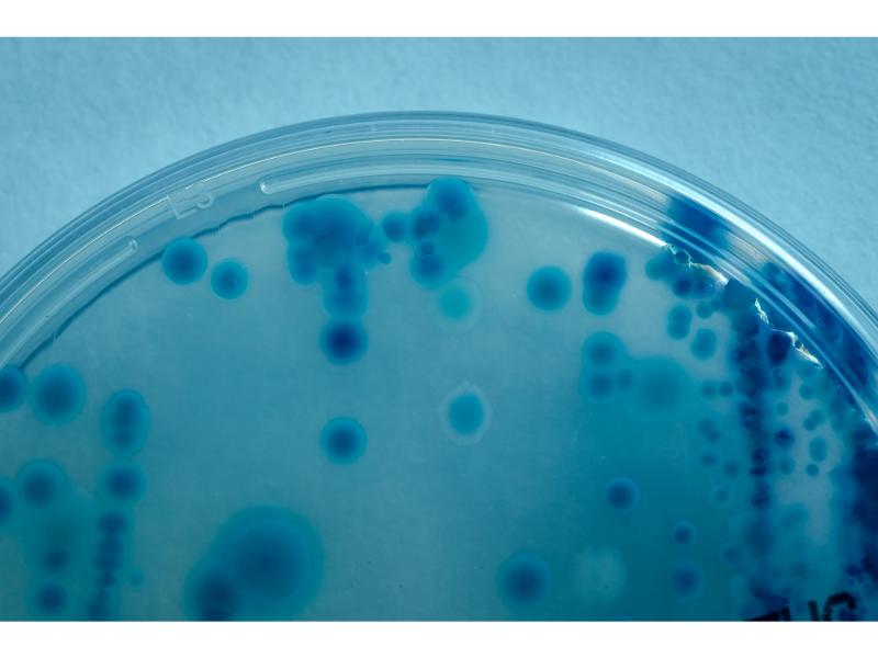laboratorio-micral-lugo (22)